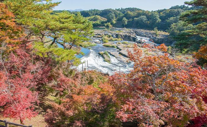 曽木の滝公園(伊佐市大口宮人) Sogi no Taki Park 紅葉