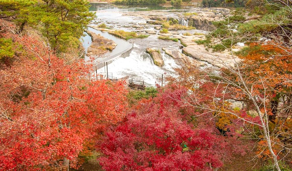 曽木の滝と紅葉1